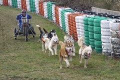Cani kart - Thierry Coffre